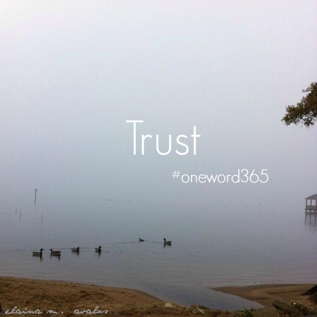 Trust 2016