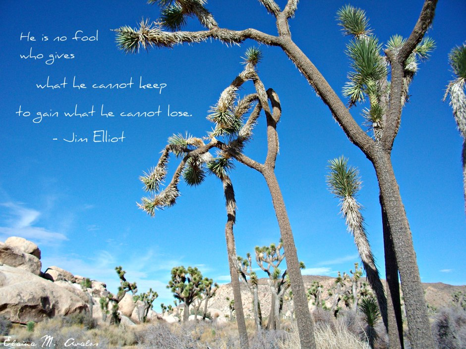 Jim Elliot, Joshua Tree, JTNP,