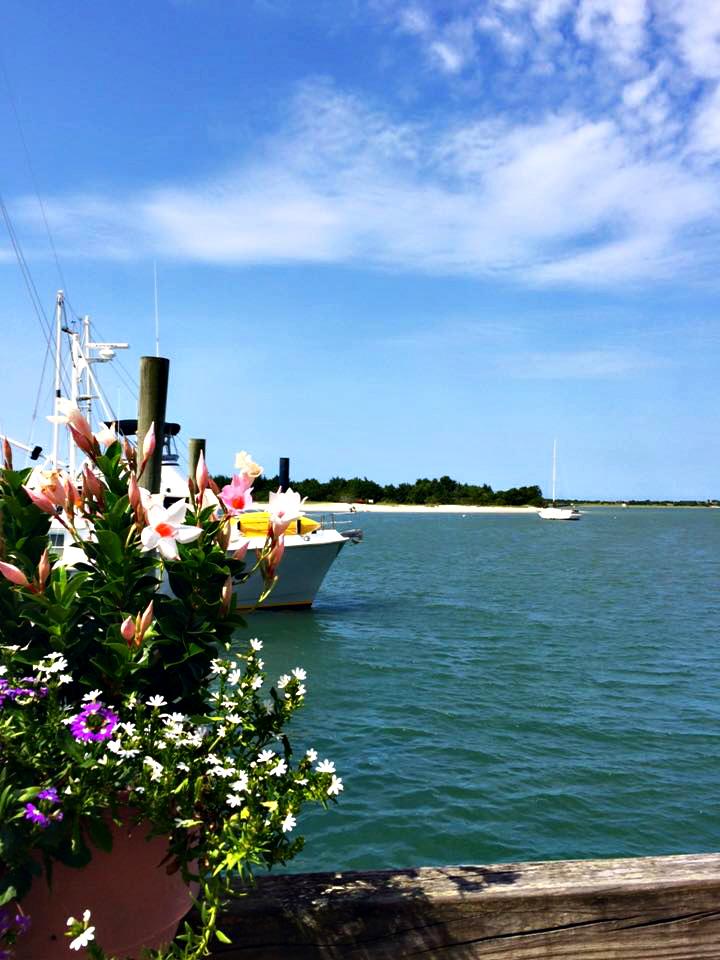 Beaufort Docks, Beaufort NC, Carrot Island,