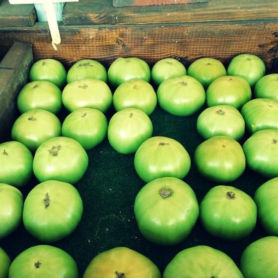 friendly market, morehead city, elaina avalos, green tomato, chasing hope, chasing dreams