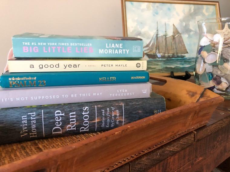 TBR, Elaina Avalos, Chasing Hope, reading challenge 2020