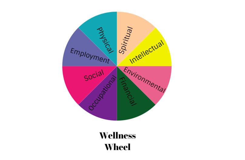 elaina-avalos-wellness-wheel-wellness