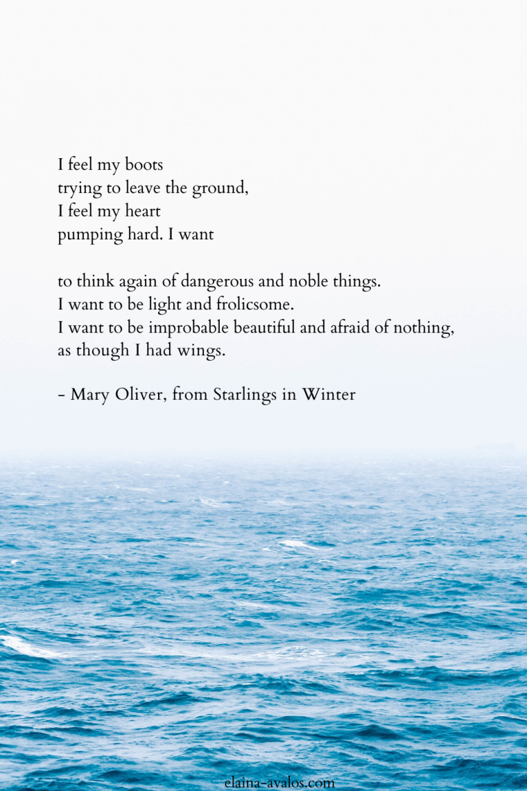 mary oliver, live well be well, elaina avalos, starlings in winter